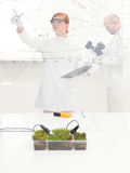 Female scientist monitoring a plant experiment Royalty Free Stock Image