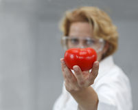 Female Scientist Offering Natural Food. Image of a female researcher offering a tomato and an apple to suggest the idea that healthy eating is recommended also Stock Image