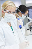 Female Scientist Pipette & Microscope Laboratory. A blond female medical or scientific researcher or doctor using her pipette in a laboratory with her colleague Royalty Free Stock Photography