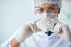 Female scientist researcher conducting an experiment in a labora Royalty Free Stock Image