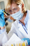 Female Scientist Studying Test Tube In Laboratory Stock Images