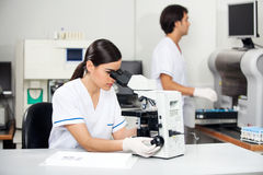 Female Scientist Using Microscope In Lab. Young female scientist using microscope in laboratory with colleague working in background Royalty Free Stock Image
