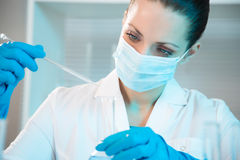 Female scientist working in laboratory Royalty Free Stock Photo
