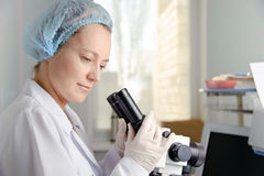 Doctor with Microscope. Stock Images