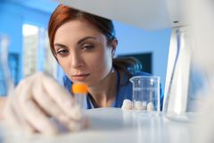 Female scientist working with sample in chemistry laboratory stock photos