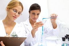 Female Scientist Working Together Royalty Free Stock Photo