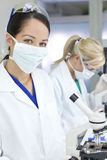 Female Scientists with Microscopes in a Laboratory Stock Image