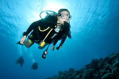 Female scuba diver. Scuba diver swims on coral reef stock photography