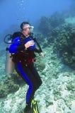 Female scuba diver. Single female scuba diver in purple wetsuit near coral reef in caribbean sea near grand cayman island Royalty Free Stock Photos