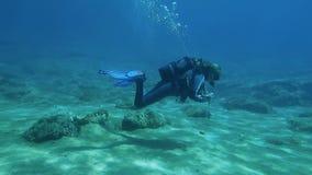 Female scuba diver stock video