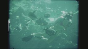Female Scuba Diver Feeding Fish Underwater. USA, HAWAII, HONOLULU, APRIL 1977. Three Shot Sequence. Couple Of Bat Rays Gliding By And A Female Scuba Diver In A stock video footage