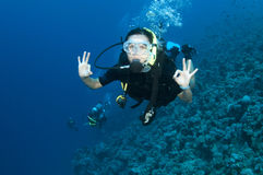 Female scuba diver gives OK sign. On a coral reef in the Bahamas Royalty Free Stock Photography