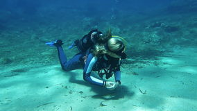 Female scuba Diver stock video footage
