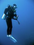 Female scuba diver underwater philippines. Female diver performing safety stop after a deep dive in blue water the phillipines stock images