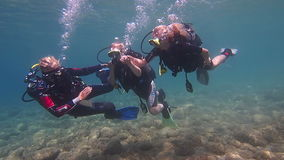 Female Scuba Divers stock video