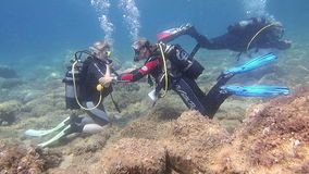 Female Scuba Divers stock footage