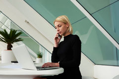 Female secretary calling to her boss to tell what she read about new project in network on laptop computer. Confident woman talking on mobile phone and reading royalty free stock images