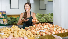 Female seller wearing apron holding yellow onion bulbs Royalty Free Stock Photo