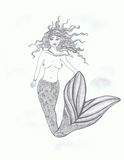 Female sensual mermaid Royalty Free Stock Image