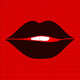 Female sexy lips on a lacy background. Female sexy lips on a lacy red background Royalty Free Stock Images
