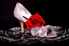 Female Shoe and rose Stock Photo