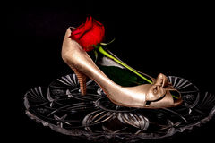 Female Shoe and rose Stock Photography