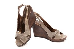 Female shoes Stock Images