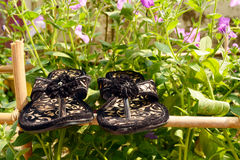 Female shoes. In a garden on a bamboo structure Royalty Free Stock Image