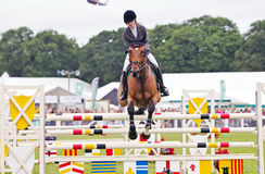 Female show jumper Stock Images