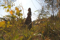 Female silhouette in the autumn forest. The girl`s figure against the sunlight among the autumn grasses in the Siberian forest Stock Photos