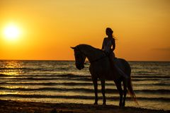 Female silhouette on a horse at sunset by the sea stock photo