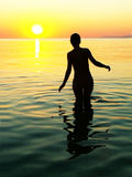 Female silhouette with the sunset Royalty Free Stock Photos