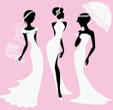 Female silhouettes in wedding dresses Stock Images