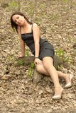Female sitting on a stump Stock Images