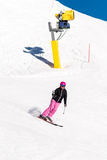 Female skier in fresh powder snow and blue sky. Action shot of a female sportive middle aged skier in fresh powder snow with snow cannon and blue sky in the Royalty Free Stock Photo