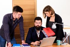 Female small minority. Woman attractive lady working with men colleagues. Office collective concept. Coworkers stock photos
