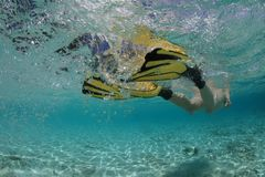 Female snorkeler. Diving in beautiful blue lagoon Stock Image