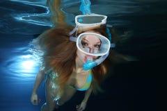 Female snorkeler underwater Stock Photos