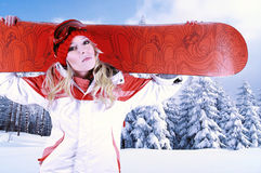 Female snowboarder in a wintery forest scene. Royalty Free Stock Photo