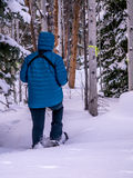 Female snowshoeing in winter, portrait orientation Royalty Free Stock Image