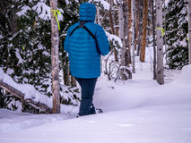 Female snowshoeing in winter wonderland Stock Photography