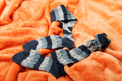 Female socks on an orange Stock Photography