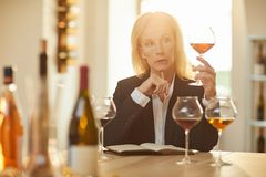 Female Sommelier. Portrait of female sommelier holding glass during wine tasting session in sunlight, copy space royalty free stock photos