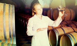 Female sommelier in wine cellar. Portrait of positive professional taster of winery posing with wine in cellar Stock Images
