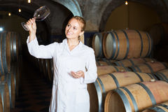 Female sommelier in wine cellar. Portrait of professional female taster of winery posing with wine in cellar Stock Images