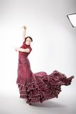 Female spanish flamenco dancer Stock Photography