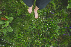 Female standing barefoot on green grass and flowers Royalty Free Stock Image