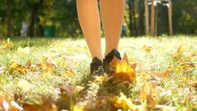 Steps colorful autumn city park legs stock video