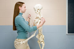 Female student dancing with human skeleton Royalty Free Stock Photography