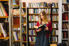 Female student reading a book between bookshelves in university library.  Royalty Free Stock Images